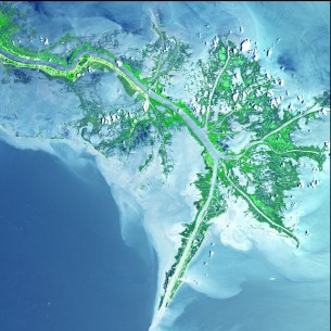 NASA satellite view of Mississippi river delta