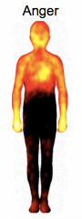 Heat map of anger in the body