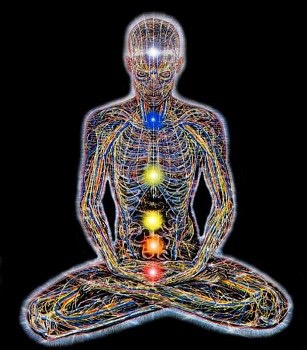 The Living Matrix Pt.2: Meridians and Points